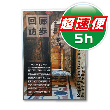 パネル【パネリックス超速便5h】
